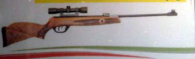 تفنگ بادی آرتا